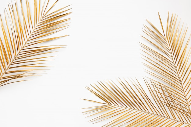 Shiny golden tropical palm leaves close up border frame isolated on white background