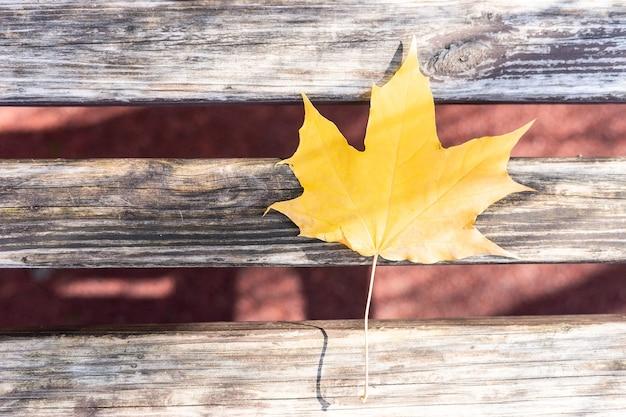 素朴な木製の光沢のあるオレンジ色の秋のカエデの葉