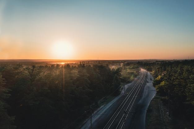 Блестящие рельсы на повороте железной дороги среди хвойного леса на закате в ясный летний день живописного л ...