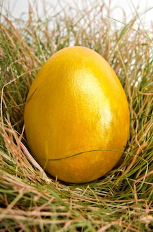 Shiny yellow easter egg in the nest