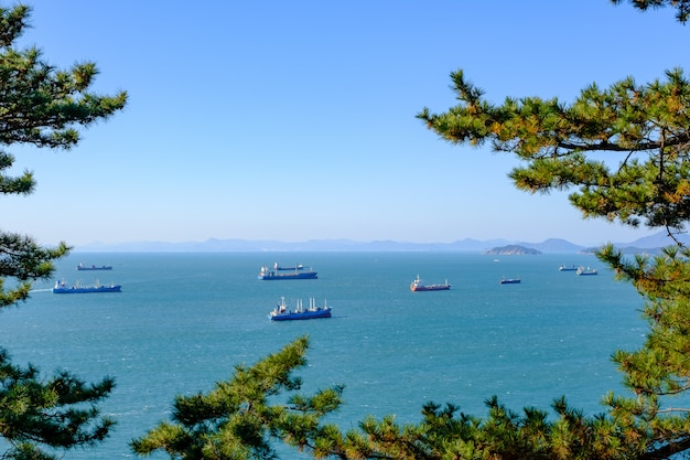 Shipping cargo and fishing boat in tree frame