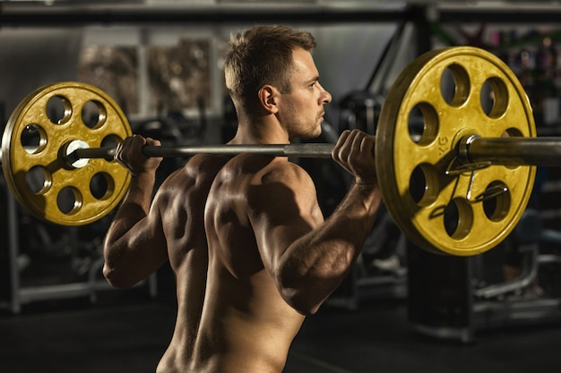 Shirtless sportsman with muscular back and torso training at the gym squatting with barbell