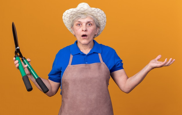 Shocked elderly female gardener wearing gardening hat holding gardening scissors and keeping hand open