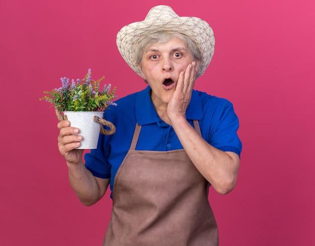 ガーデニング帽子をかぶってショックを受けた年配の女性の庭師は、顔に手を置き、植木鉢を保持します