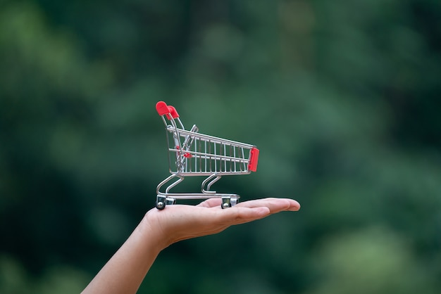 Shopping cart on hand