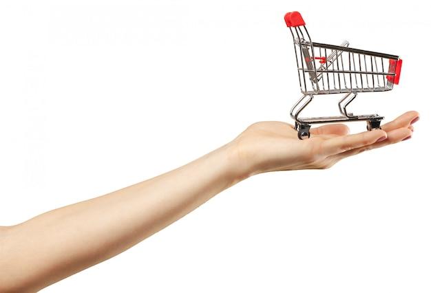Shopping cart in hand