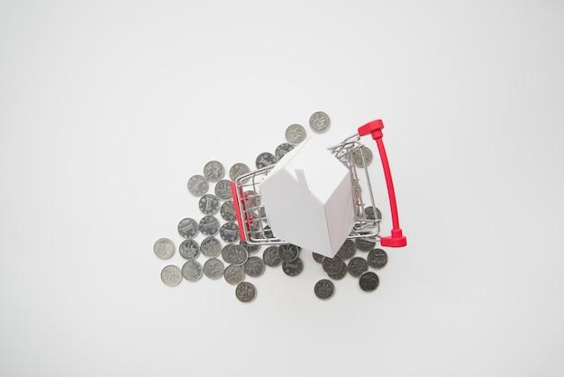 Shopping cart miniature on coins