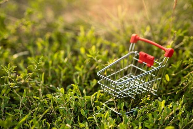 Магазинная тележкаа на зеленой траве с светлым заходом солнца. шоппинг экологически концепции.