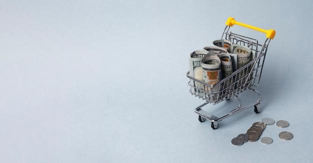 돈으로 쇼핑 카트입니다. 음식 구매력과 비용의 개념. 복사 공간 배너