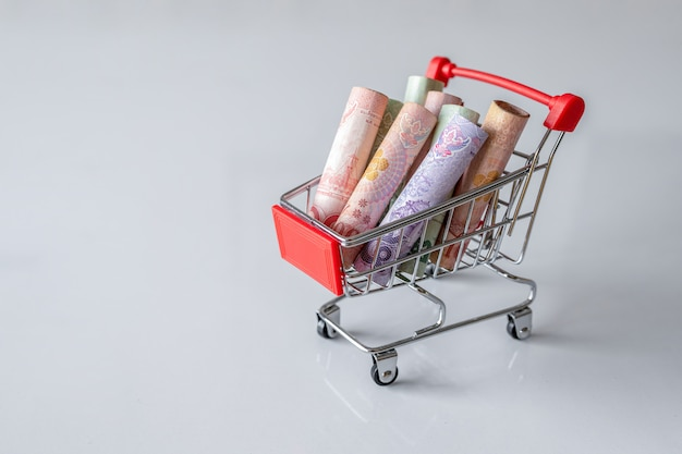 Shopping cart with the money inside