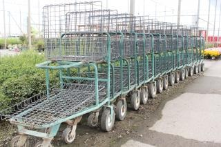 Shopping carts in a garden center, outside