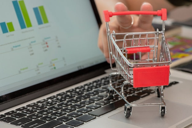 Shopping on the laptop, concept : business, finance, saving, investment