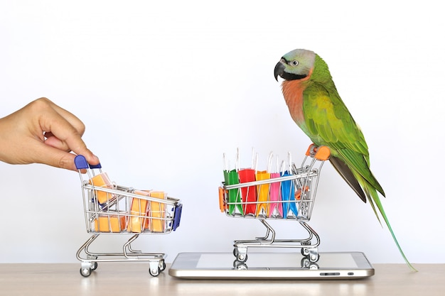 Shopping online,parrot on model miniature shopping cart and shopping bag on tablet smart device