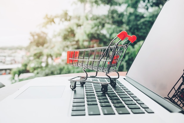 Shopping online with shopping cart and credit card