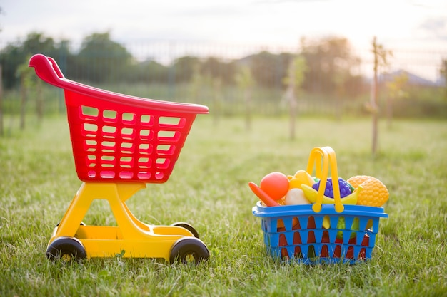 Shopping pushcart and a basket with toy fruits and vegetables.