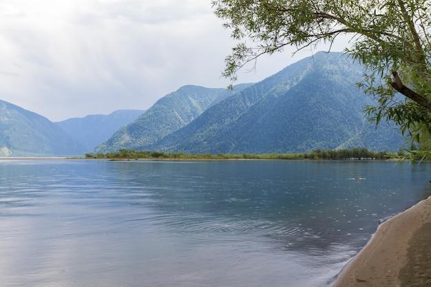 The shore of lake teletskoye in altai