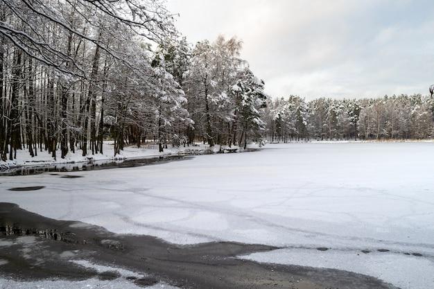 숲과 호수 해안입니다. 눈 덮힌 나무. 겨울 분위기, 라트비아의 자연.
