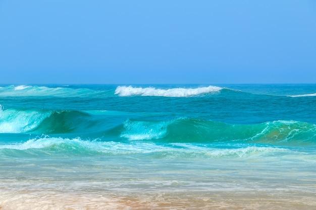 대서양과 푸른 하늘의 해안. 서핑