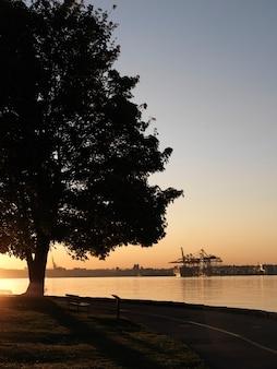 Shoreline at dusk in vancouver, british columbia, canada
