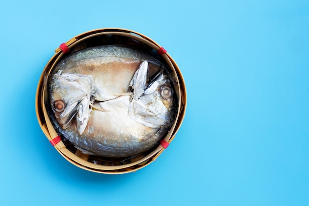 Короткая скумбрия в корзине рыб на синем фоне. копировать пространство
