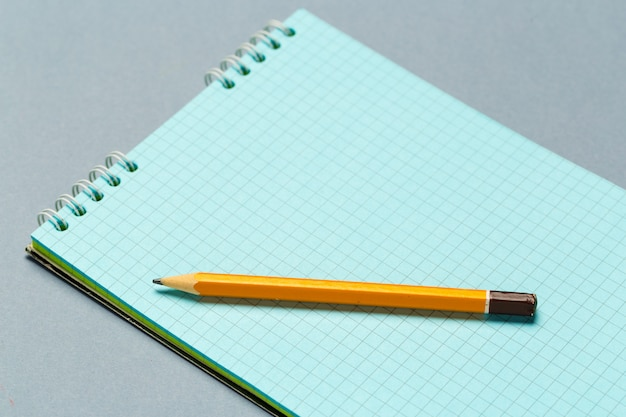 Short worn pencil with notepad
