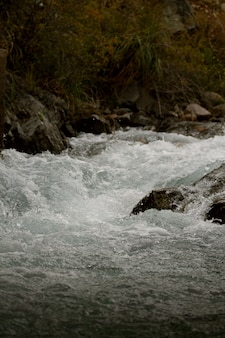 Scatto di un bellissimo fiume che scorre durante la primavera - ottimo per gli sfondi