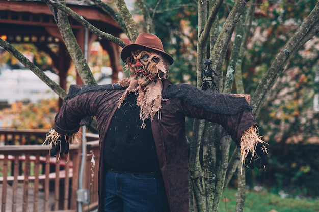 Shot of a creepy scarecrow with a hat beside a tree