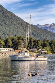 Shot of a fishing boat sailing in harbour in sitka
