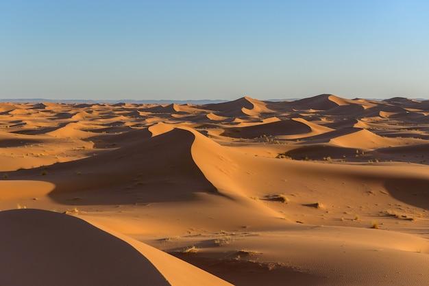 モロッコのサハラ砂漠の砂丘のショット