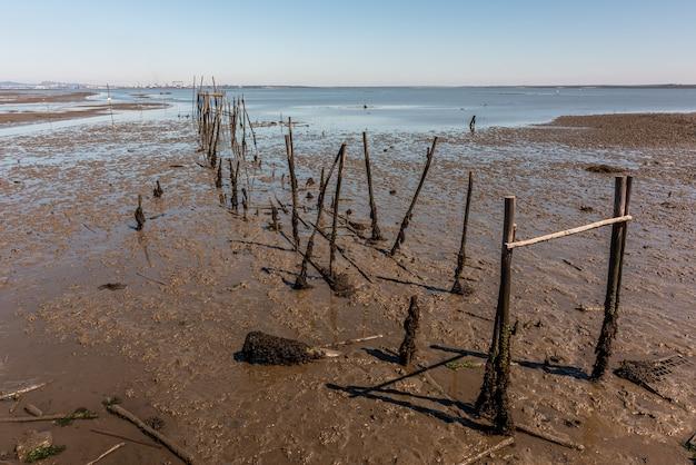 ポルトガル、caispalafíticodacarrasqueiraの桟橋の残骸のショット