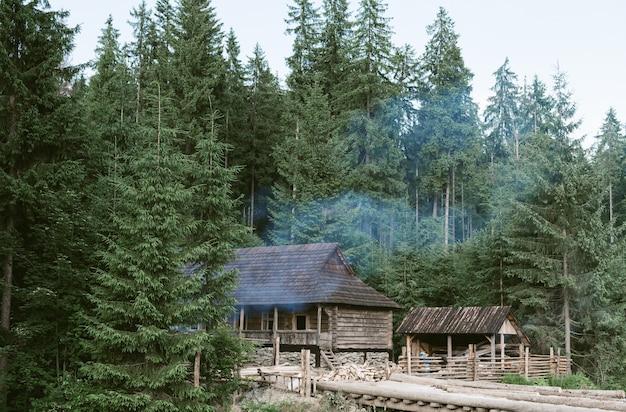 針葉樹林のモミの木に囲まれた木造コテージのショット