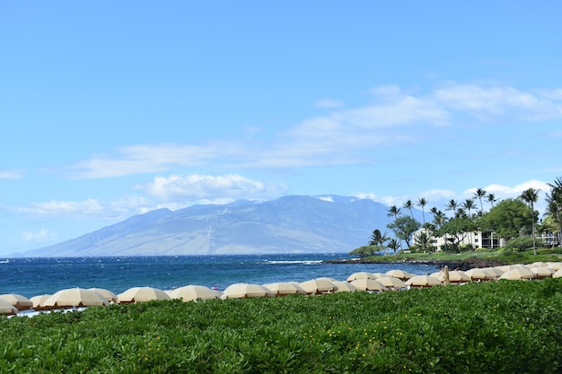 Shot of the picturesque nature of maui island, hawaiian islands