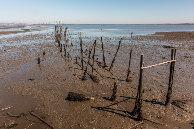 Shot of pier remnants in cais palafítico da carrasqueira, portugal