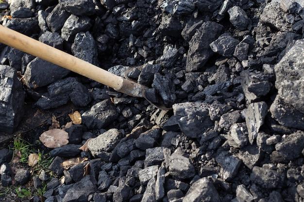 Shovel pieces of coal into a shovel. fuel for the boiler. house heating.