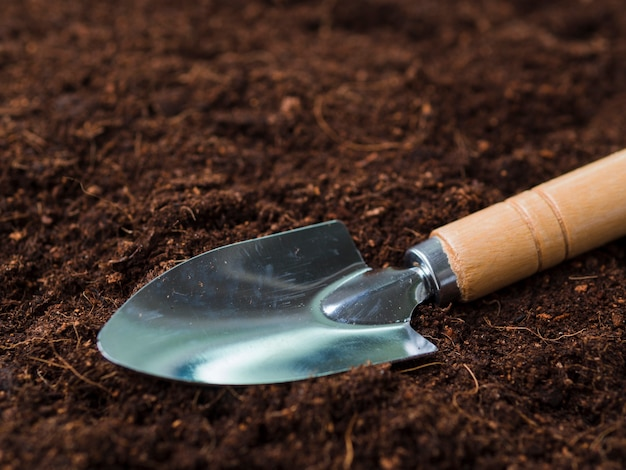 Shovel on soil