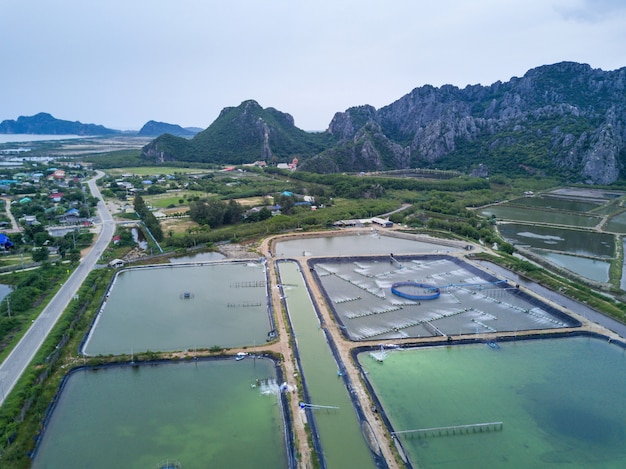 Shrimp farms from above in sam roi yot national park, thailand. drone, aerial view, top view