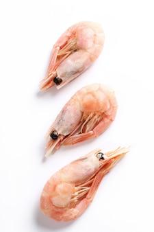 Shrimp isolated on white