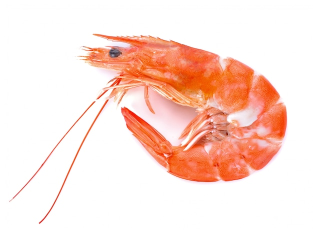 Shrimps isolated on a white
