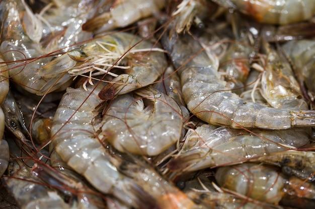 魚市場では、エビの生のクローズアップ、エビの皮をむいていない丸ごと、氷の上で販売されています。