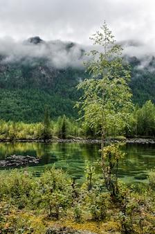 Siberia. beautiful green fog lake in the forest. buryatia