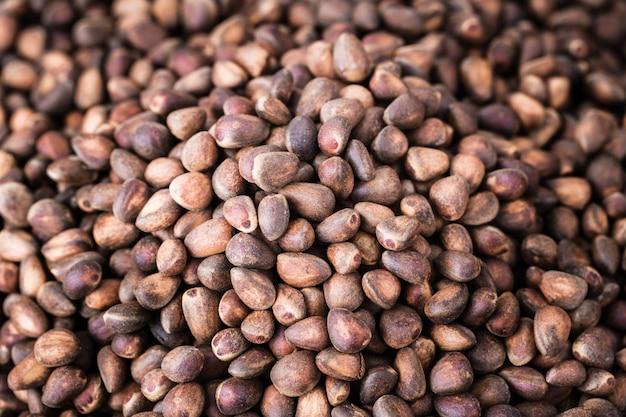 Siberian cedar pine nuts