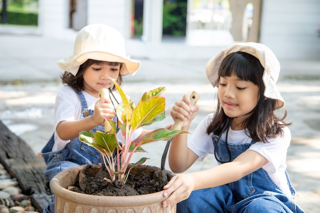 Siblings asian girl is planting spring flowers tree in pots in the garden outside the house, child education of nature. caring for new life. earth day holiday concept. world environment day. ecology.