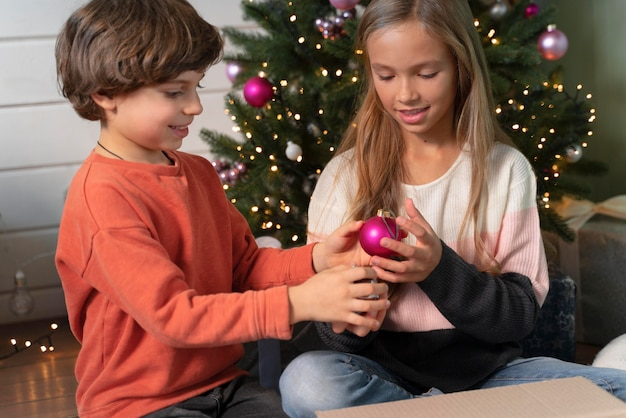 Siblings decorating the christmas tree together