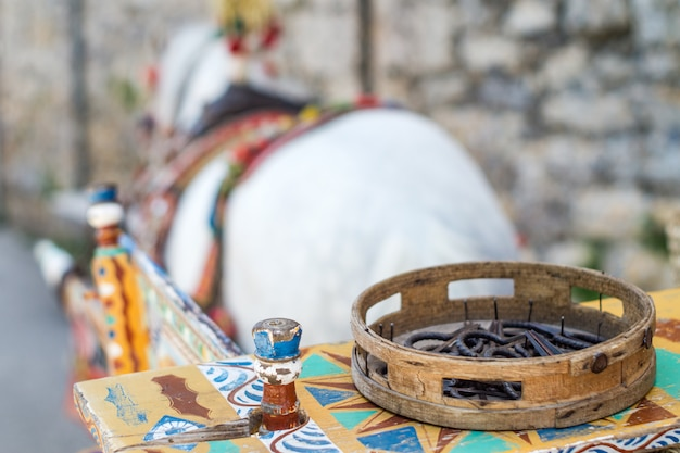 Sicilian cart with white horse.