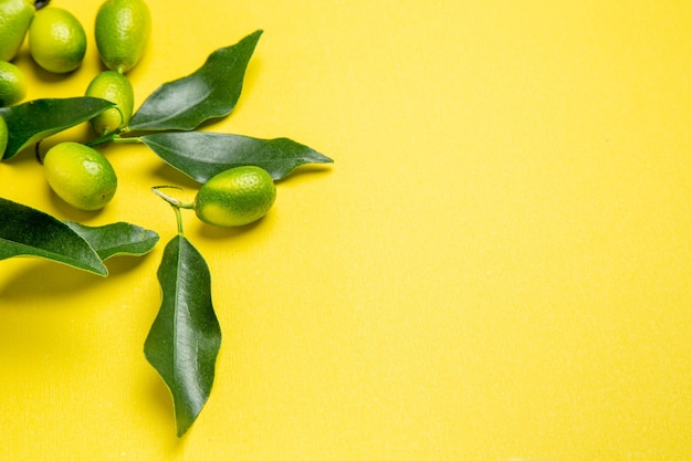 Side close-up view citrus fruits green citrus fruits with leaves on the background