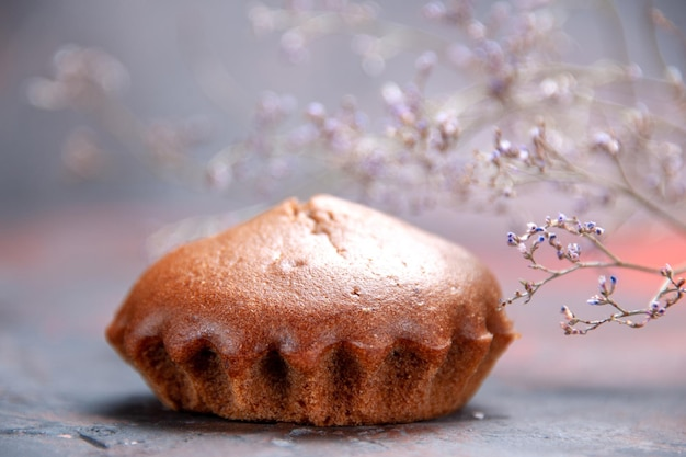 Vista ravvicinata laterale cupcake gustoso cupcake accanto ai rami