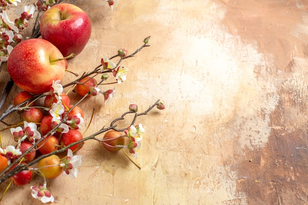 Side close-up view fruits the appetizing cherry and apples tree branches with flowers