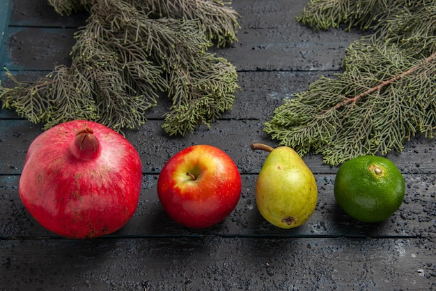 Vista ravvicinata laterale frutti e rami melograno rosso mela pera lime accanto a rami di abete rosso