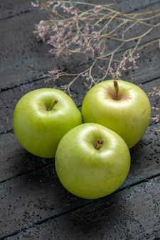 Side close-up view three apples green apples on dark background next to branches