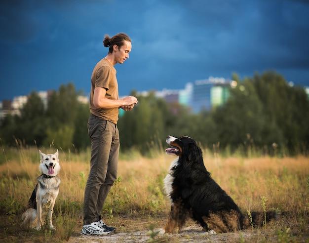 Вид сбоку на молодого стильного кавказца, тренирующего двух собак